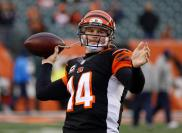 23. Cincinnati Bengals- $195.46 (photo credit: Cincinnati Bengals' Official Facebook Page)